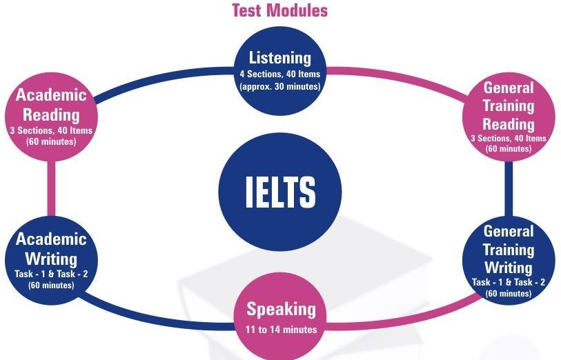 Academic & Reading modules